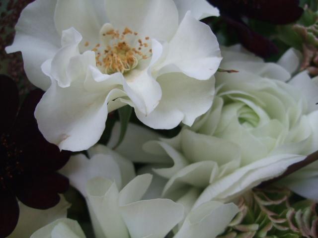 オークリーフ(春の花束)_f0049672_17372350.jpg