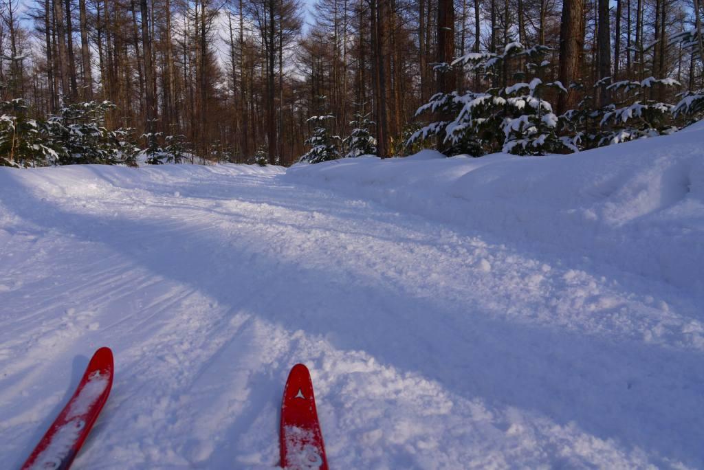 この冬初めてのクロカンスキー_f0138096_17215123.jpg