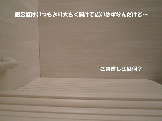 e0094407_0103844.jpg