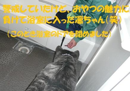 f0121712_642957.jpg
