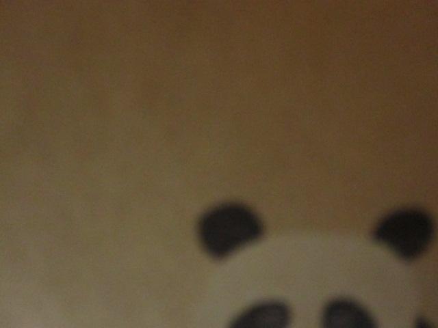 PANDA_c0200314_20123110.jpg