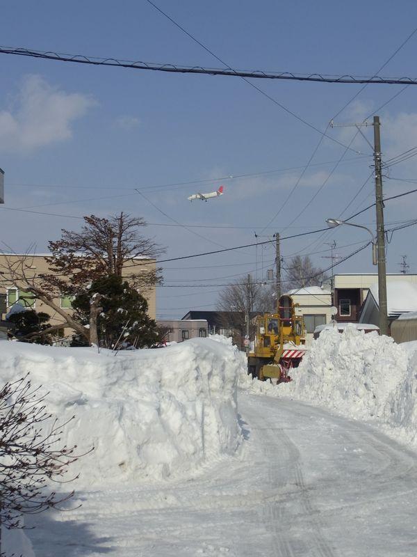 排雪サンデー_c0025115_22393484.jpg
