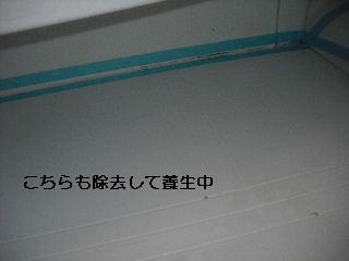 f0031037_20401621.jpg