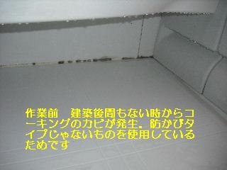 f0031037_204024.jpg