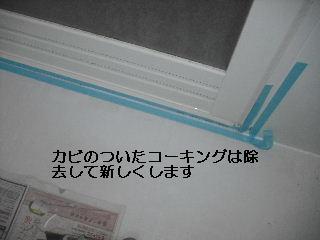 f0031037_20412470.jpg