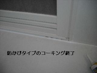 f0031037_20414164.jpg