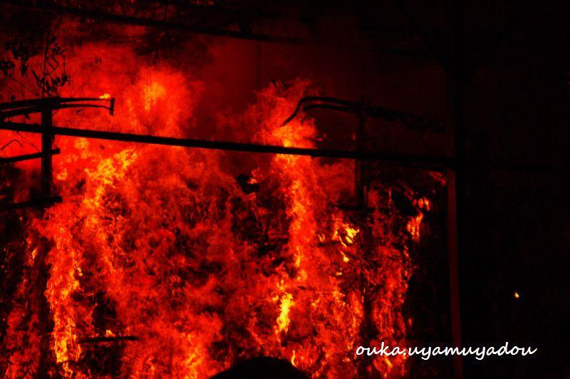 2月3日 京都吉田神社 節分会_a0157263_1355389.jpg
