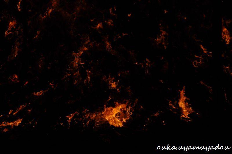 2月3日 京都吉田神社 節分会_a0157263_136417.jpg