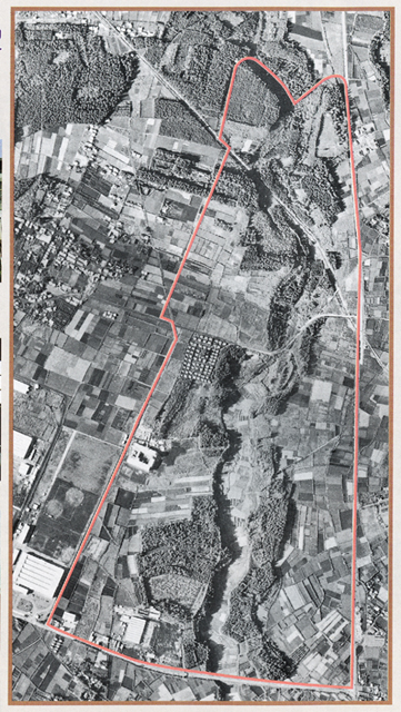 Excavation of Tsukimino-kamino site Loc.14_a0186568_23111921.jpg