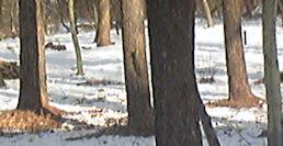 f0161535_010201.jpg
