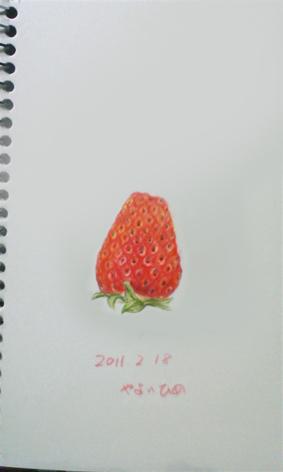 苺_c0206645_1536478.jpg