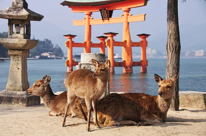 雅-宮島・厳島神社_f0155048_23504470.jpg