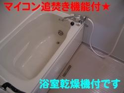 d0204154_15413866.jpg