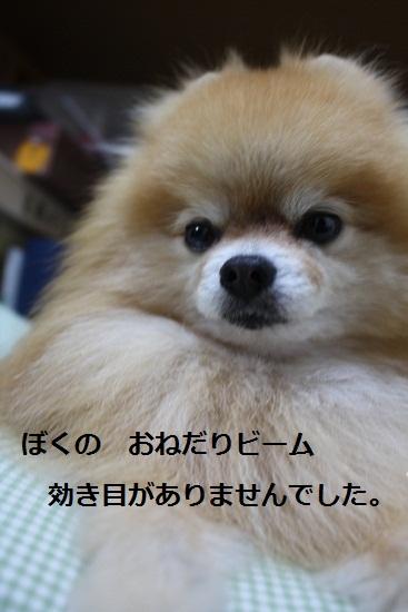 b0182968_1943622.jpg