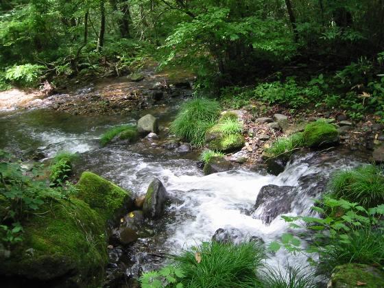 岩代清水の泉と池をめぐる21_a0087378_9403947.jpg