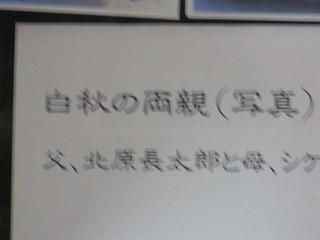a0137997_20122944.jpg