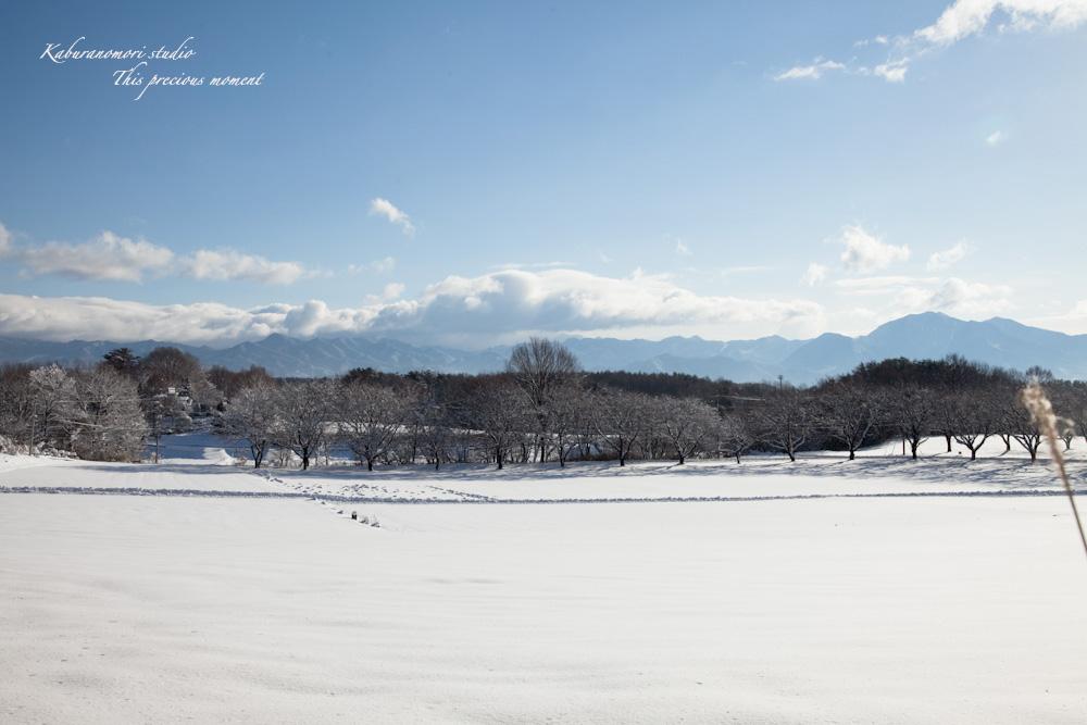 この冬一番!白銀の中を歩く_c0137403_21463876.jpg