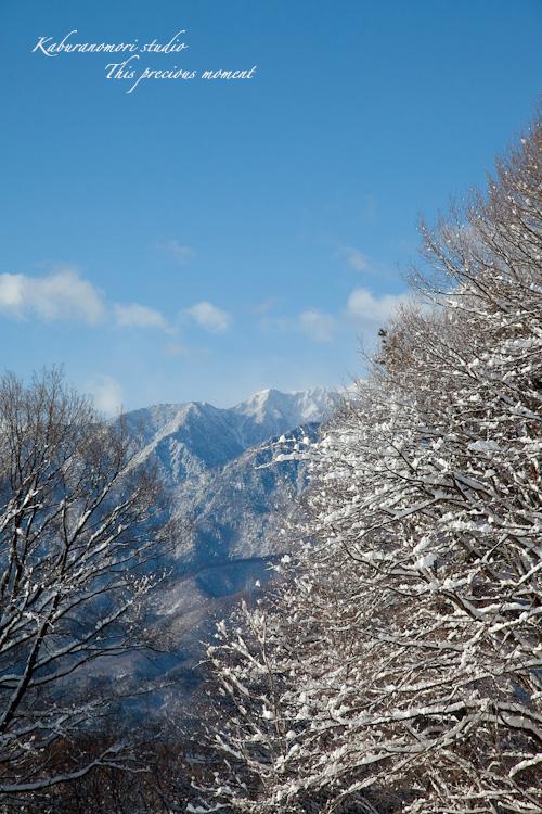この冬一番!白銀の中を歩く_c0137403_21465445.jpg