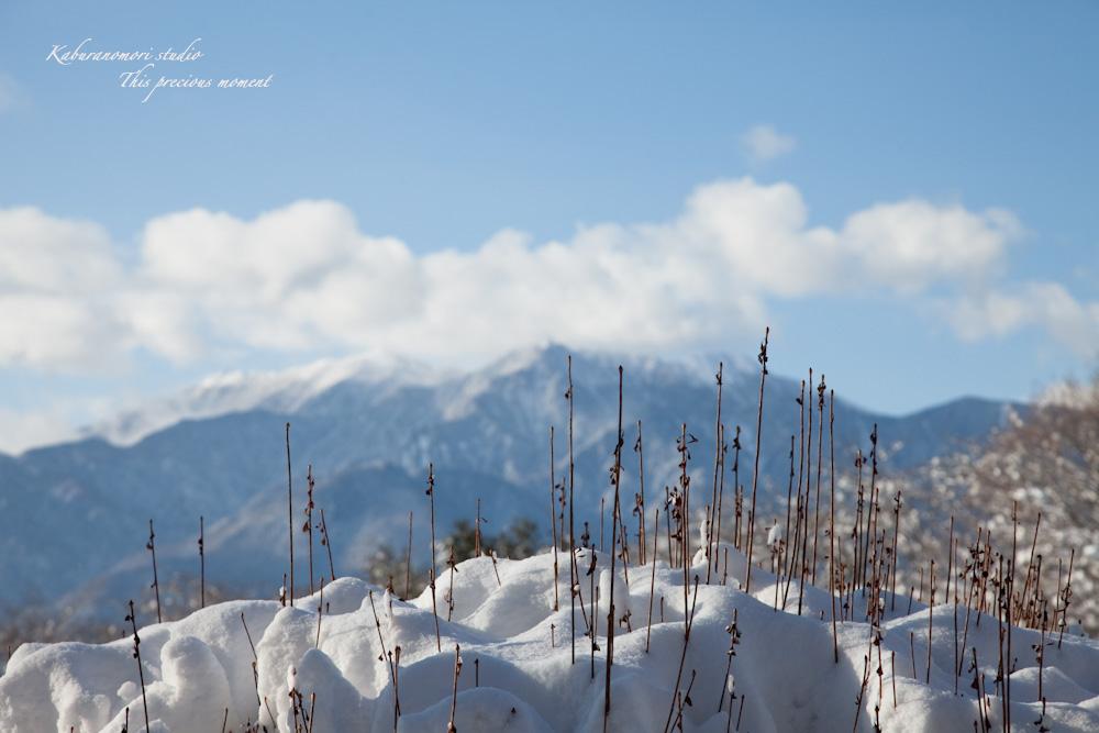 この冬一番!白銀の中を歩く_c0137403_21481618.jpg
