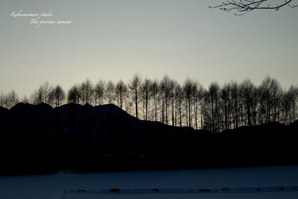 この冬一番!白銀の中を歩く_c0137403_2241920.jpg