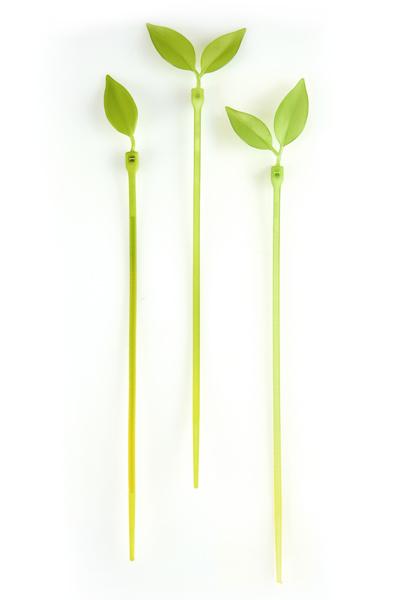 新緑の季節を先取り!?_c0173405_14483149.jpg