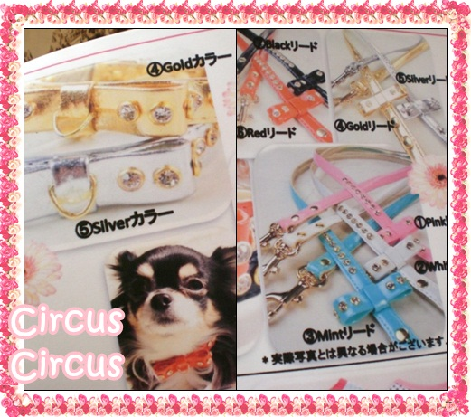 CircusCircus新作のご予約のご案内!!!!_b0084929_915415.jpg