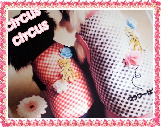 CircusCircus新作のご予約のご案内!!!!Vo2_b0084929_9531374.jpg