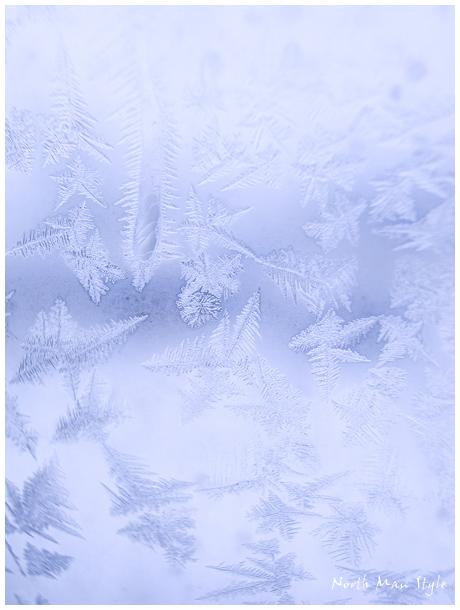 寒い日_a0114060_2231920.jpg