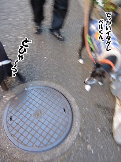 f0158862_20535369.jpg
