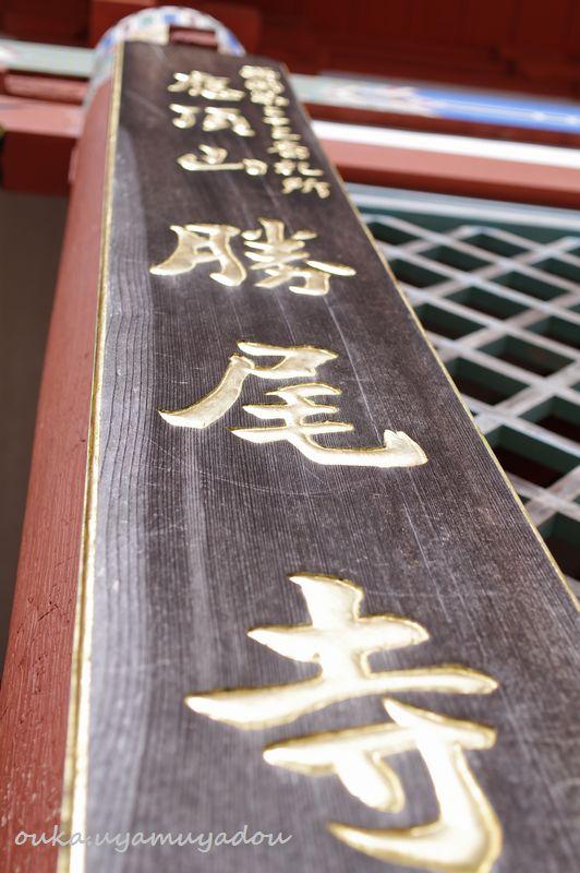西国第二十三番札所 勝尾寺_a0157263_2242290.jpg