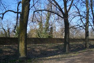 フェッラーラの城壁 : 北編_a0169172_1424617.jpg