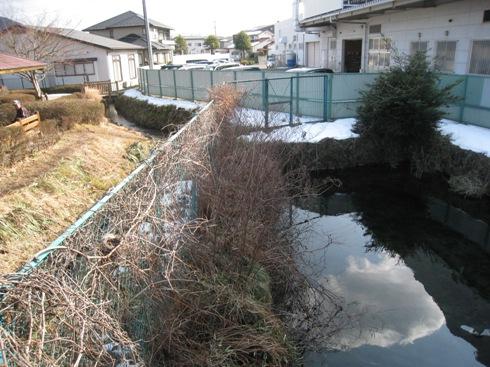 岩代清水の泉と池をめぐる22_a0087378_5432379.jpg