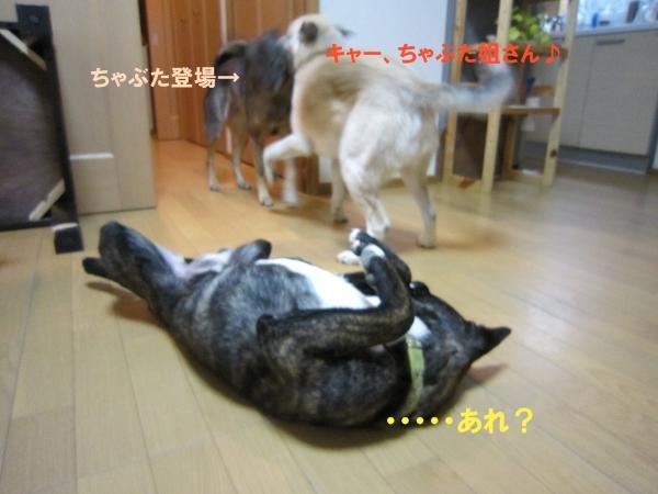 c0000189_14141940.jpg