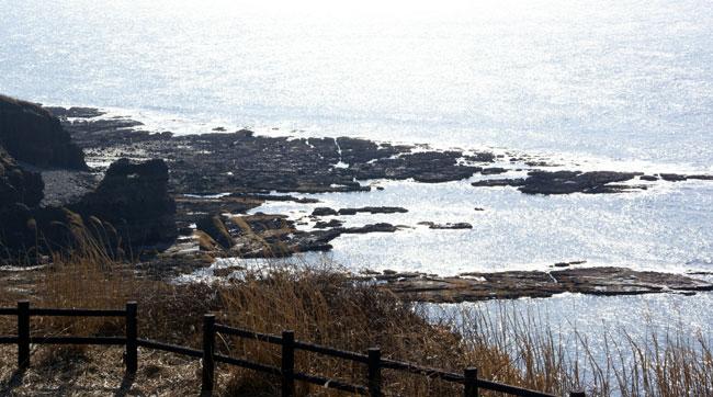 春風に誘われて、西海岸ドライブ(^^)_a0136293_1803186.jpg
