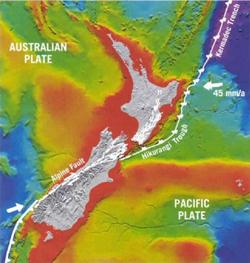「クライストチャーチ大地震を予想した日本人」:アルパイン断層の大地震_e0171614_1893086.jpg