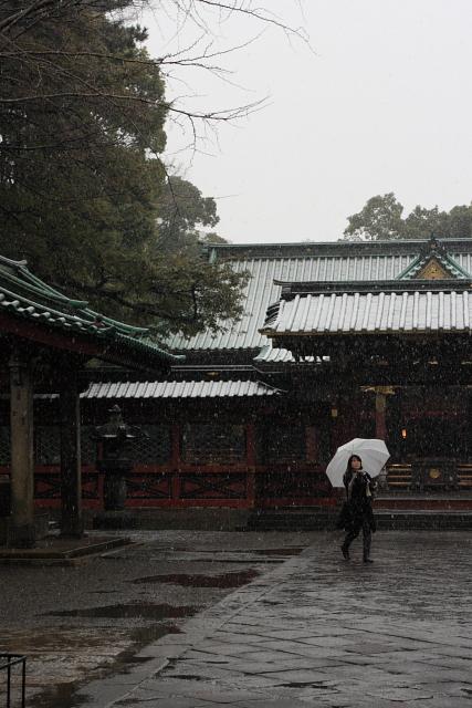 根津  雪の根津神社_b0061717_1484851.jpg