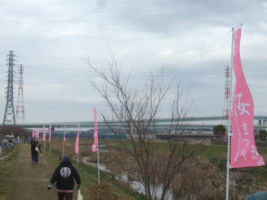 桜祭り.....寒い中震えながら!_b0137932_2092976.jpg