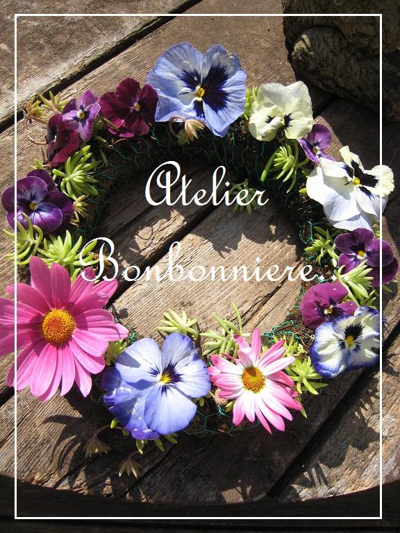 春の花_f0199750_17364650.jpg