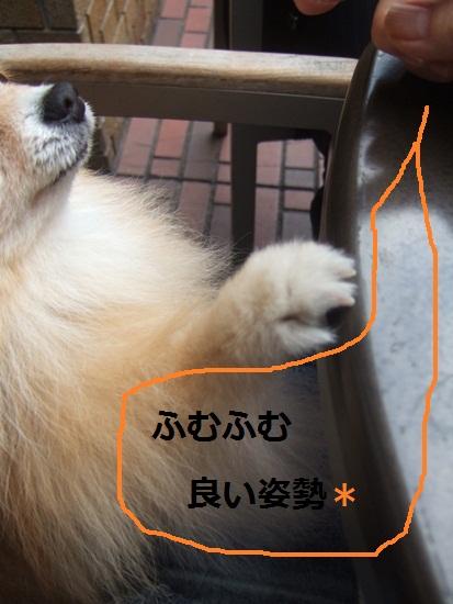 b0182968_14531352.jpg