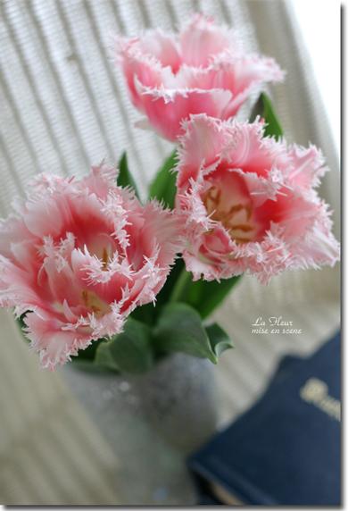 Pink  Lips_f0127281_16421317.jpg