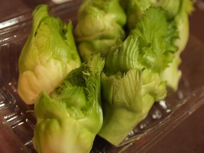 春野菜2_f0232994_619346.jpg