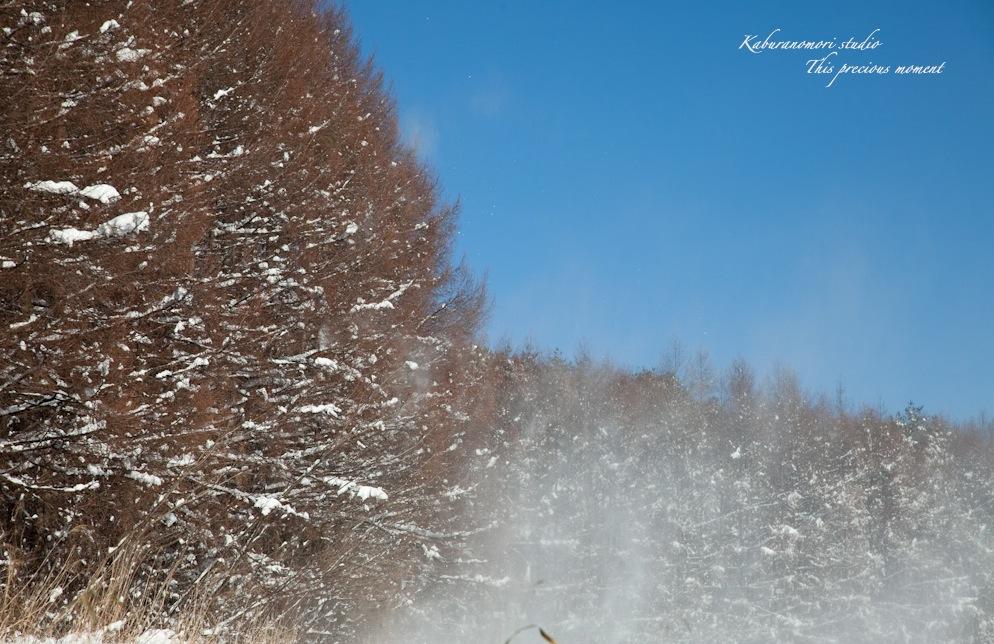 この冬一番!白銀の中を歩く_c0137403_9313640.jpg