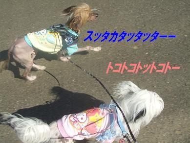 f0179203_16193141.jpg