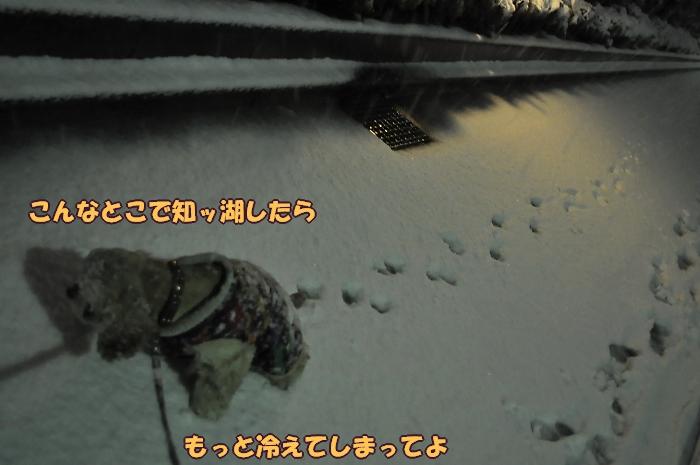 b0067012_264941.jpg