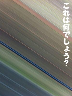 b0080632_373062.jpg