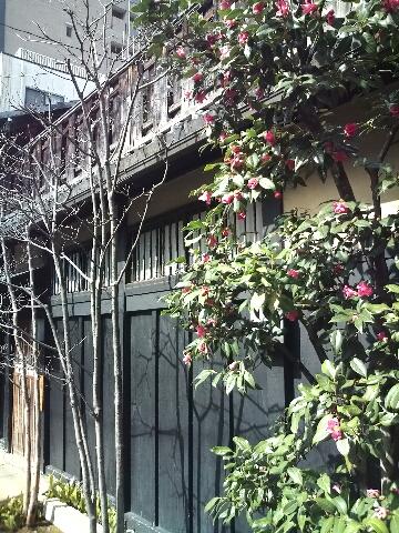 ポカポカな京都_c0113733_0465869.jpg