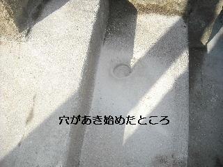 f0031037_20372934.jpg