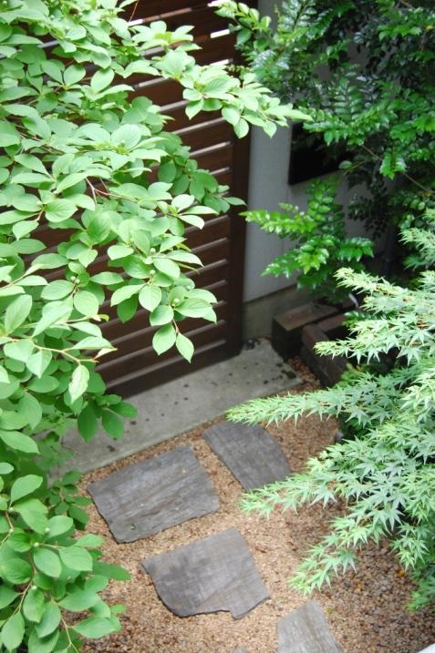 シンボルツリーはシマトネリコ☆_c0152341_21575424.jpg