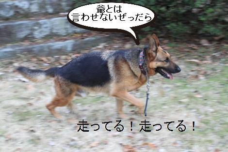 f0137544_22325121.jpg