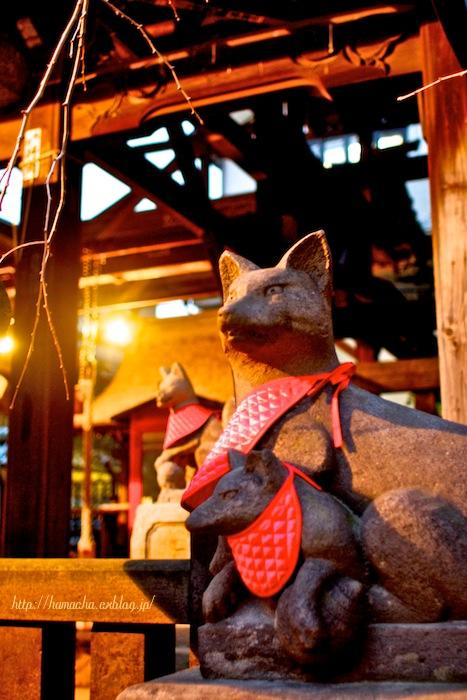 Inari Shrine_c0158775_3233277.jpg